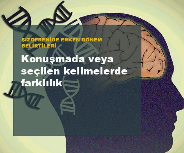 Şizofreni'de Erken Dönem Belirtileri 16