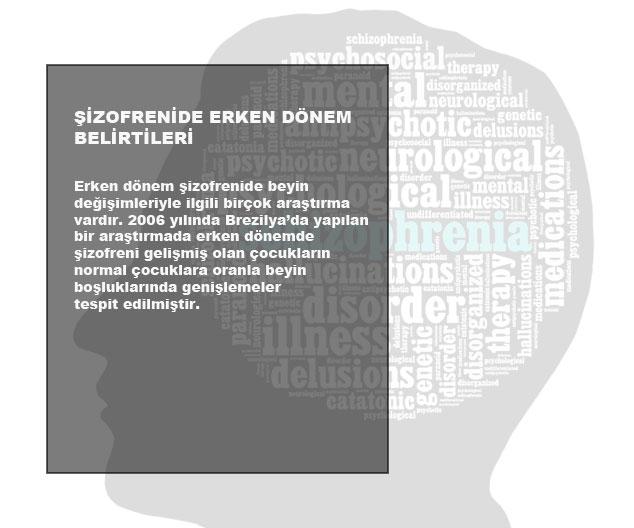 Şizofreni'de Erken Dönem Belirtileri 3