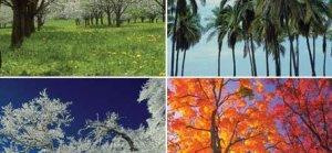 Mevsim Değişikliğinin İnsan Psikolojisine Etkileri