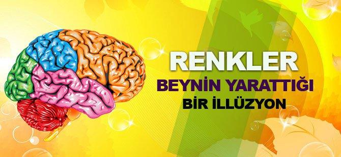 Renkler Beynin Oluşturduğu Bir İllüzyon!