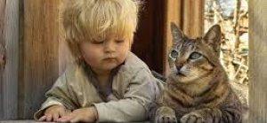 Kedi Beslemek Şizofren Yapabilir!