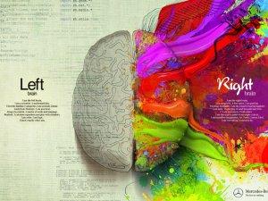 Sağ Beyin ve Sol Beyin İşbirliği