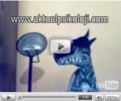 İlginç Bir İlüzyon (Yanılsama) -Video-