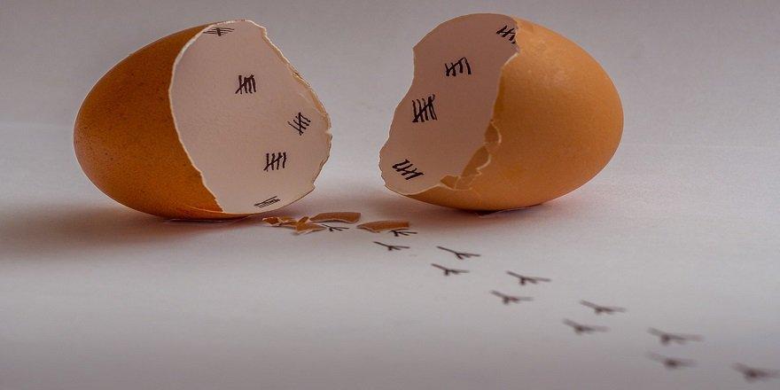 Öyle bir faydası ortaya çıktı ki...Yumurta kabuklarını bir daha atmak istemeyeceksiniz!