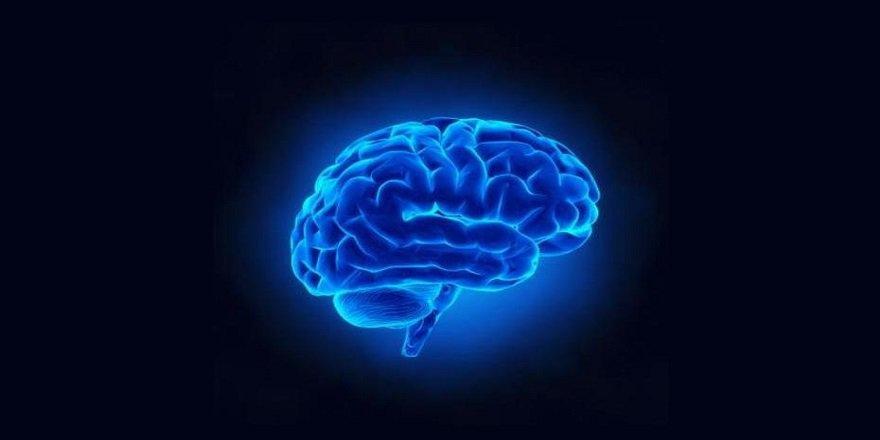 Uzmanlar açıkladı! Beynin üretkenliğini arttırıyor
