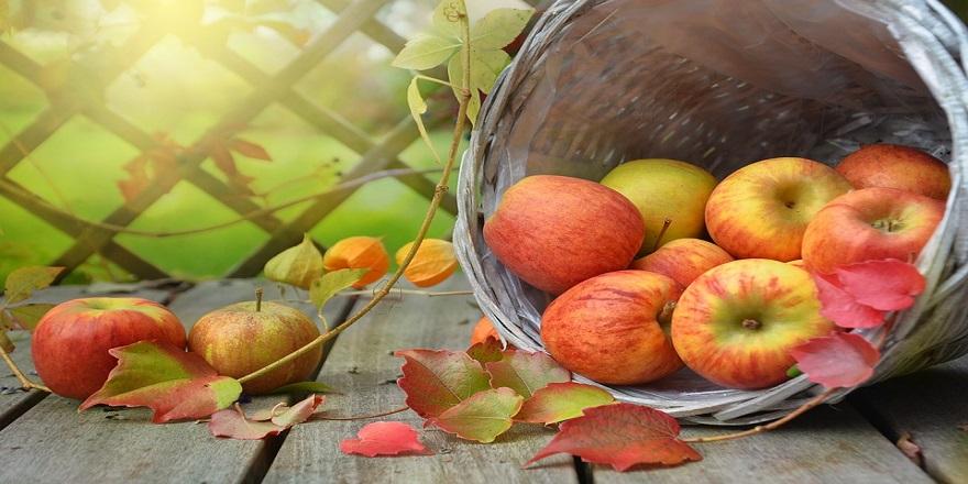 Her sabah bir elma yerseniz... Etkisine inanamayacaksınız