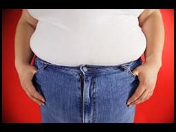Obezite ile mücadele programı