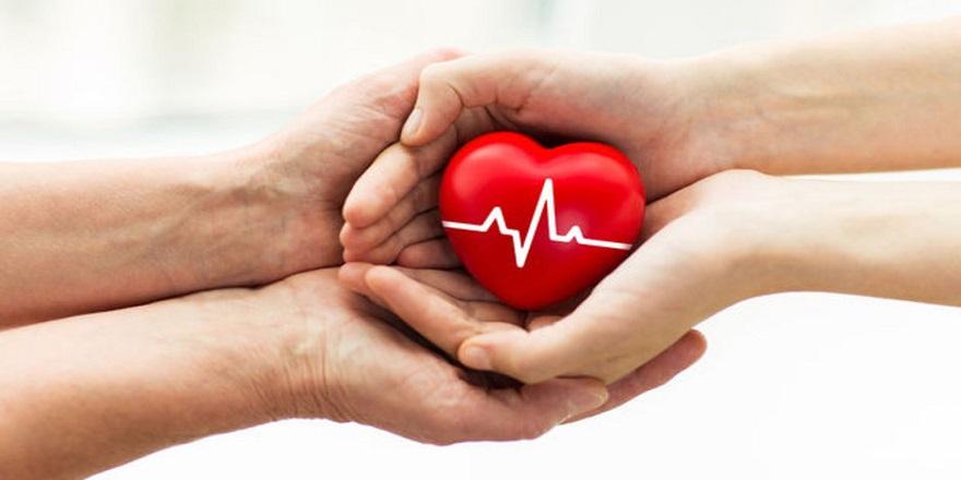 'Organınızı Bağışlar Mısınız' Sorusuna Eşten Anlamlı Yanıt