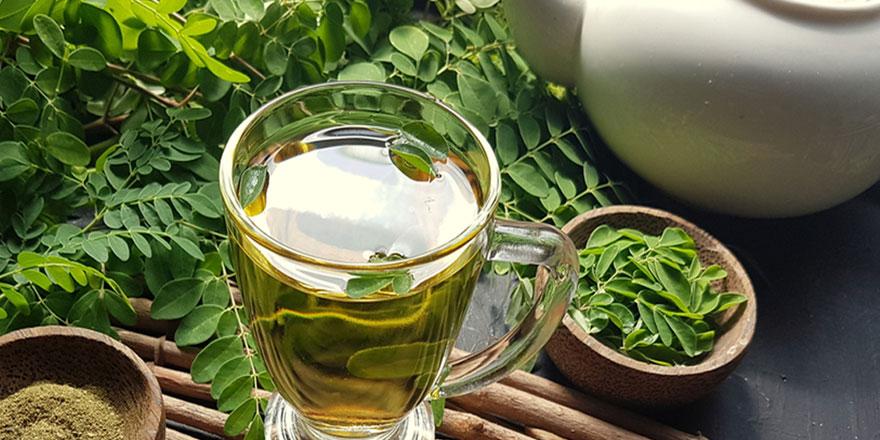 Moringa Çayı Nedir? Faydaları ve Zararları Nelerdir?