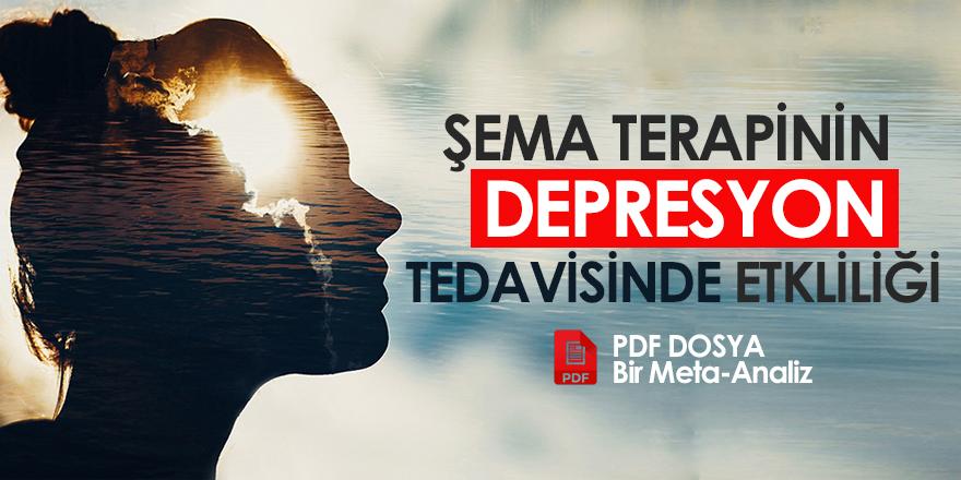 Şema Terapinin Depresif Bozuklukların Tedavisindeki Etkililiği: Bir Meta-Analiz