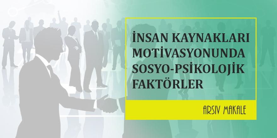 İnsan Kaynaklarının Motivasyonunda Sosyo-Psikolojik Faktörlerin Önemi