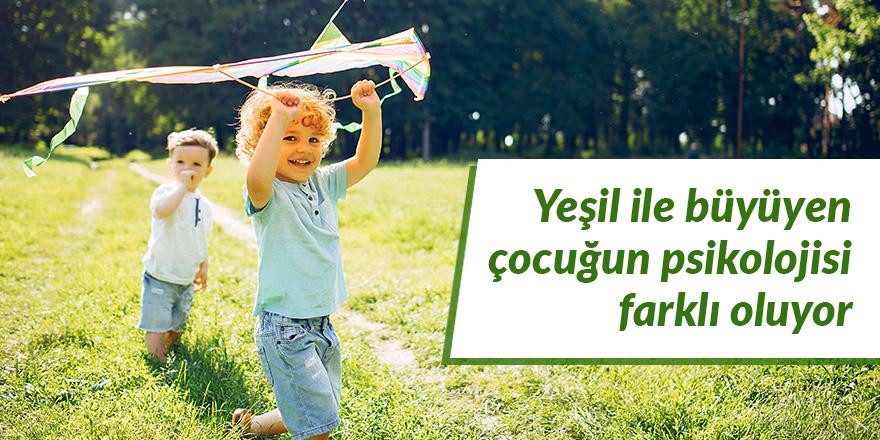 Yeşil ile büyüyen çocuğun psikolojisi farklı oluyor