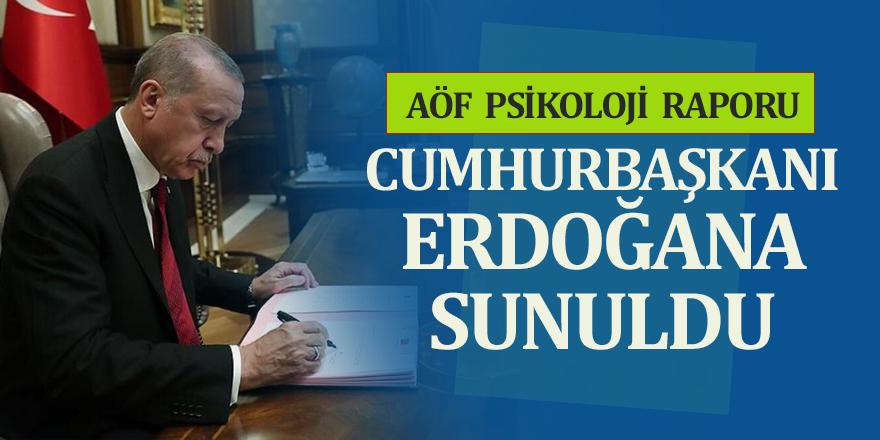 AÖF Psikoloji Raporu Cumhurbaşkanı Erdoğan'a Sunuldu