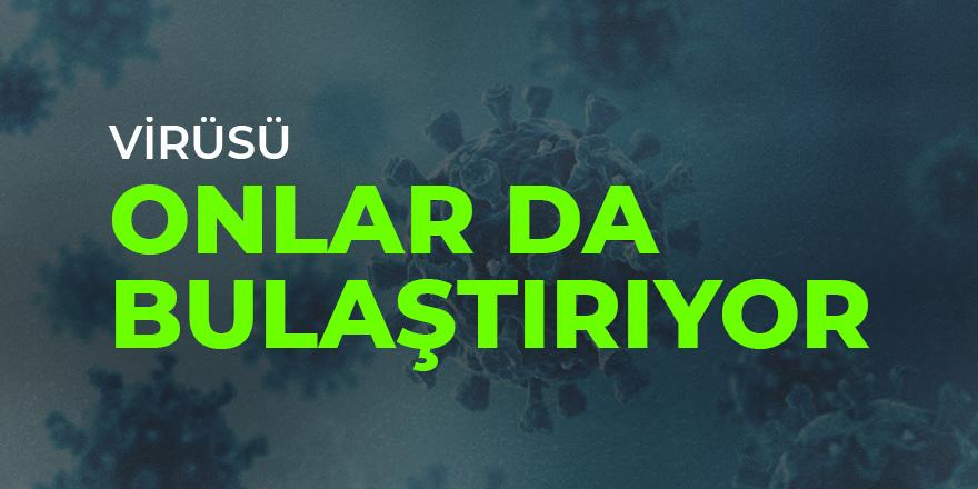 Kimse ihtimal vermiyordu ama sonunda bu da oldu: Onlar da korona virüsü bulaştırıyor