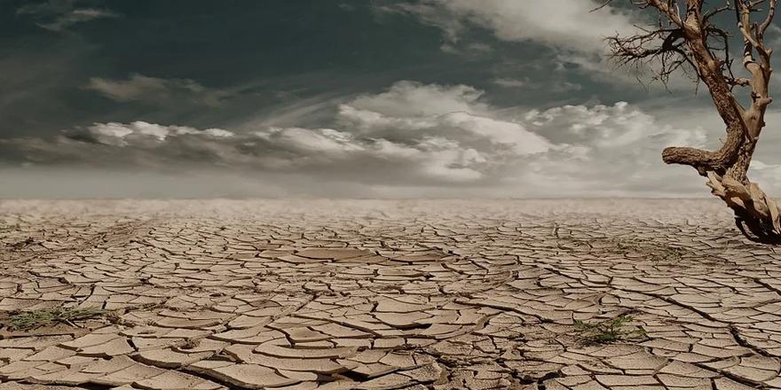Doğal Hayatı Koruma Örgütü: Büyük bir su sıkıntısı bekleniyor