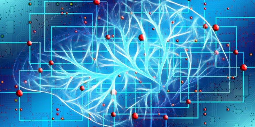İlişkilerin Biyolojisi - Recall Healing Yöntemi