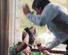 Fiziksel ceza çocuğu şiddete itiyor!