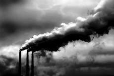 Çevre kirliliği ve kimyasallar erkekleri kadınsallaştırıyor