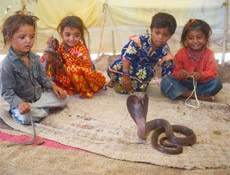 6 yaşında yılan terbiyecisi