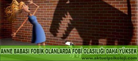 Türkiyede Görülen En Yaygın 5 Fobi