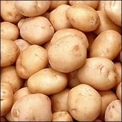 Çimlenmiş Patatese Dikkat!