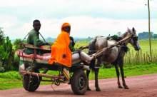 2002 Etiyopyasından satılık çocuklar