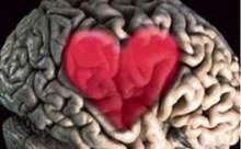 Aşk Var Mı ?