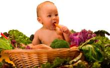 Bebeklere Yedirilmemesi Gereken Gıdalar