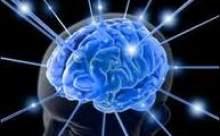 Beyinde Bulunan 130 Sorun Kaynağı Tespit Edildi