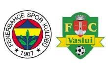 Vaslui-Fenerbahçe MAÇIN ÖZETİ