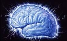 Beyin Dinlendirici Unsurlar Nelerdir