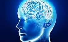 Sağ Ve Sol Beynin İşlevsel Farkı