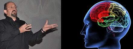 İnsan Beynine Kaç HD Film Sığar?