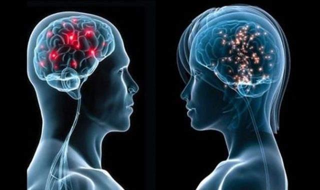 Kadınların Beyni Erkeklerden Daha İyi Çalışıyor.