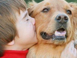 Evde Çocuğunuz İçin Hayvan Besleyin