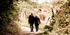 Çift dil konuşmak Alzheimer'dan korunmaya yardımcı