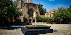 Yale Üniversitesi'nin en popüler dersi: Mutluluk 101