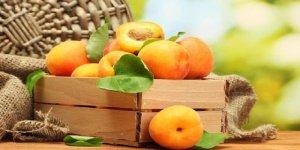 Kayısı Tüketmek İçin 7 Önemli Neden