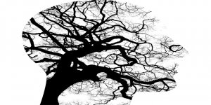 Biz Farkında Olmasak Bile Gündelik Yaşantımıza Yön Veren ve Temeli Psikolojiye Dayanan 18 Gerçek