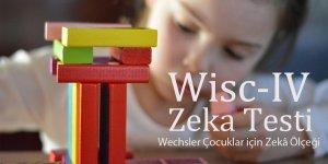 Wisc-R IV Zeka Testi Nasıl Bir Testtir?