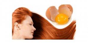 Saçı besleyen yumurta maskesi