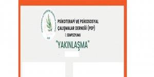 """Psikoterapi ve Psikososyal Çalışmalar Derneği: Sorunları """"yakınlaşarak"""" çözelim"""