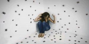 Arttırılmış Gerçeklik Uygulaması İle Böcek Ve Örümcek Korkusu ile Baş Etmek Mümkün