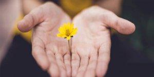 Anne-babayı affetmenin 6 adımı