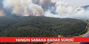 Çanakkale'nin Gelibolu ilçesindeki yangın sabaha kadar sürdü