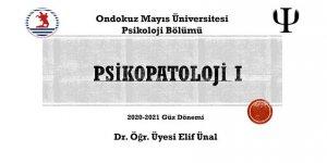 Psikopatoloji - Power Point Sunusu