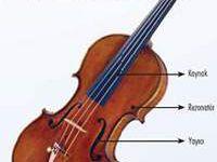 Ses Mekanizmamızdaki Harikalıklar