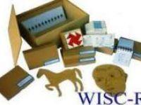 Bursa'da Çocuklar için Zeka Ölçeği WISC-R (Yenileme) Eğitimi