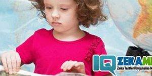 4 Yaş Çocukları İçin Zeka Testi