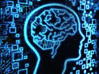 İki Dil Konuşmak Beyni Güçlendiriyor!